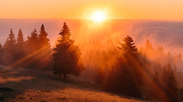 早晨唯美朝阳图片