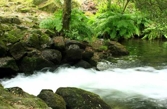 美丽的河流自然风光图片