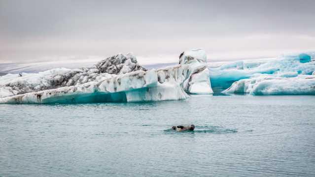 冰山景致图片