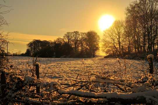 冬日雪地朝阳图片