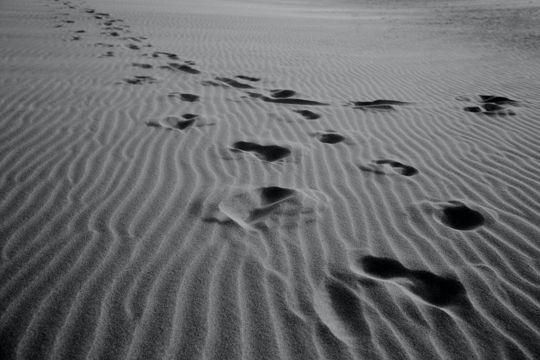 沙漠中的脚印图片
