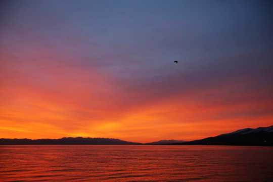 青海湖朝阳景色迷人风光