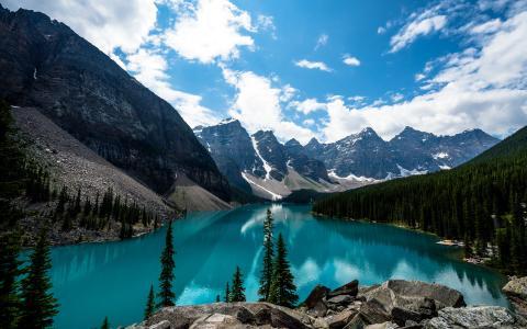 冰Lake湖,露易丝湖,班夫国家公园,加拿大