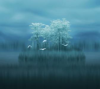 湖,树木,鸟,模糊,华为伴侣10,股票,房产