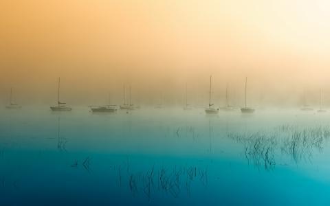 小船,湖,早晨,雾
