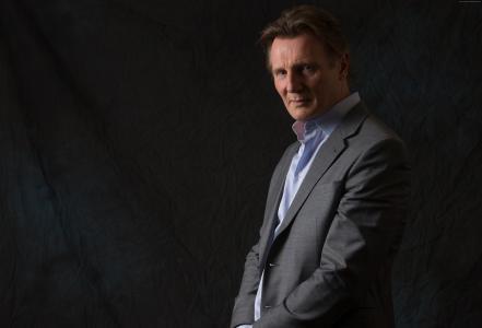 Liam Neeson,2015年最受欢迎明星,男主角(横向)