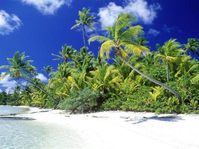 棕榈滩所罗门群岛