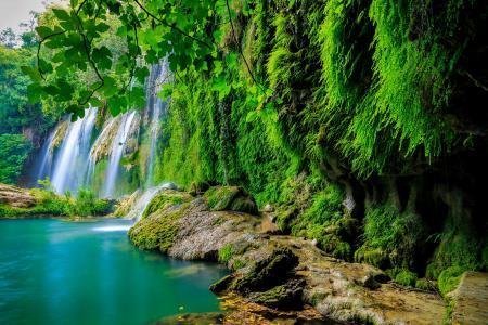 热带森林,瀑布,高清,4 k