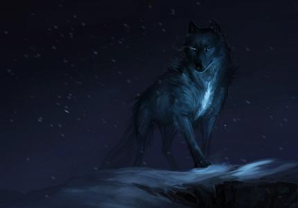狼,神话,黑暗,冬天,4 k