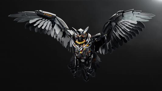 猫头鹰,3D,华硕,4k(水平)
