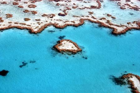 大堡礁,珊瑚礁,昆士兰,澳大利亚