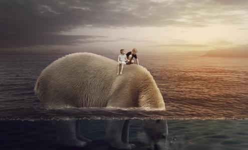 北极熊,大熊,孩子们,男孩,女孩,高清
