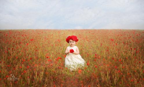 可爱的女孩,罂粟花朵,罂粟花,4K,8K