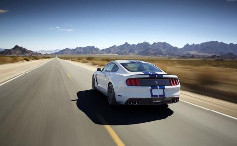 福特野马谢尔比GT350,谢尔比,GT350,野马,跑车,概念,超级跑车(水平)