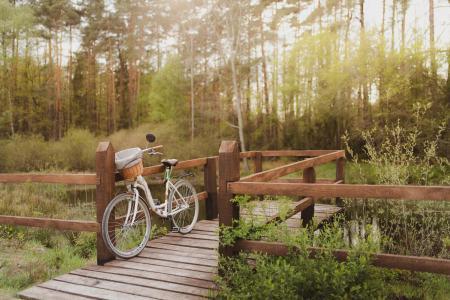 小木桥上的自行车