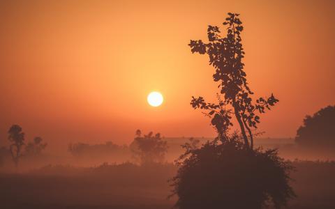有雾的日出4K