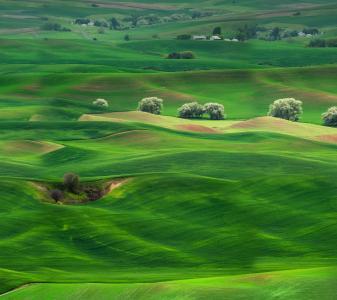 草原,景观,绿化,风景,华为伴侣10,股票,高清