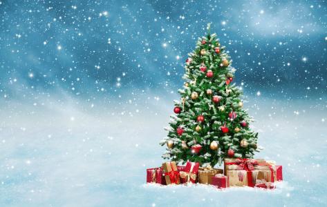 圣诞节,新年,礼物,枞树,雪,5k(水平)