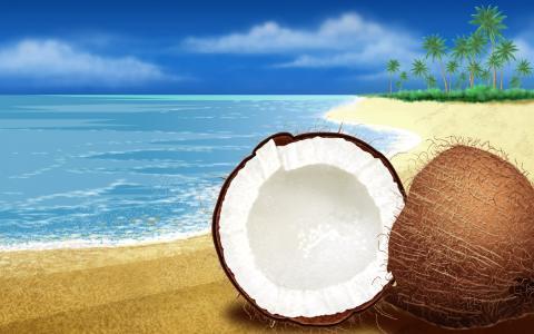 椰子高清宽