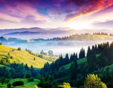 喀尔巴阡,5k,4k壁纸,松树,丘陵,日落,雾(水平)