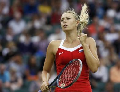 网球,女运动员,莎拉波娃,肖像,球拍(水平)