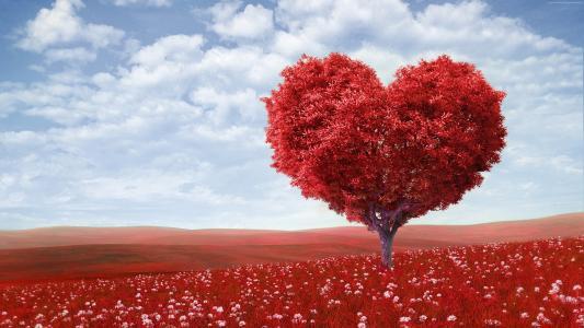 爱的形象,心,4k,树(水平)