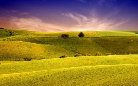 惊人的风景