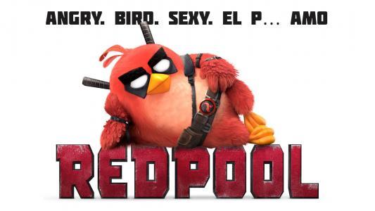 愤怒的小鸟RedPool