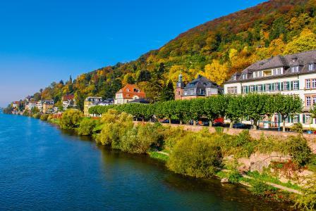 镇,秋天,德国,高清