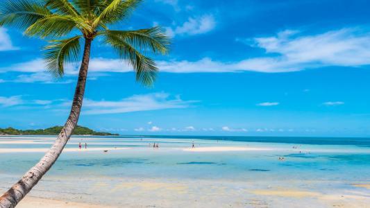 热带美丽沙滩天堂