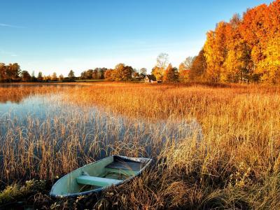河里小船秋季唯美风光