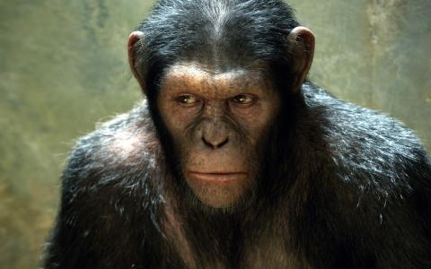 猿电影的行星的崛起