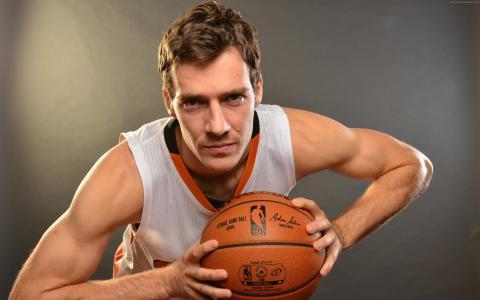 戈兰德拉季奇,篮球,NBA,迈阿密热火(横向)