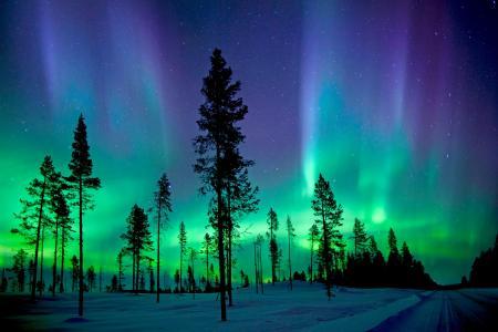 北极光,阿比斯库国家公园,极光Borealis,高清