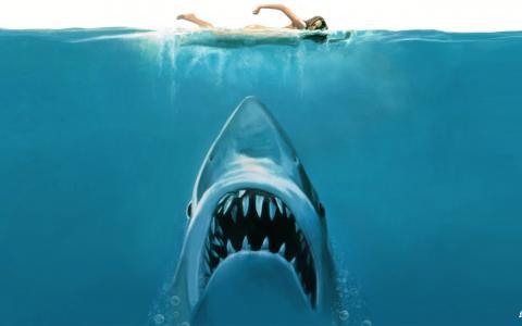 大白鲨电影概念