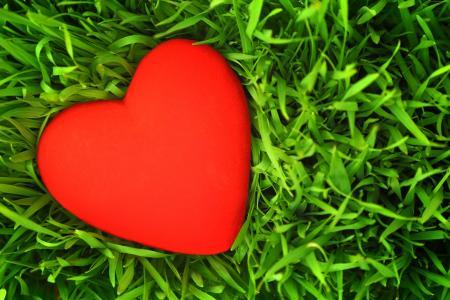 爱的形象,心,草,5K(水平)