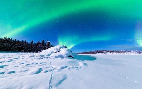 阿拉斯加州的梦幻北极光