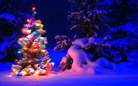 下雪的圣诞树灯