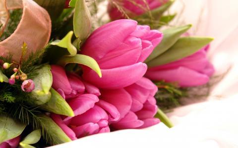 花式粉红色的花朵