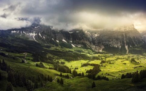 山,景观,瑞士,高清