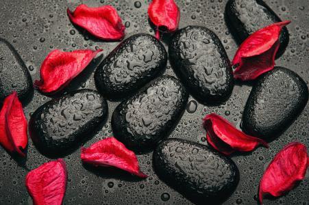 红色的花瓣,黑石头,4 k