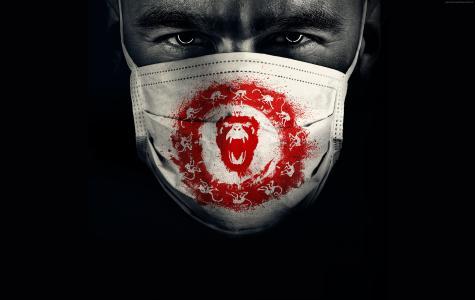 12个猴子,亚伦斯坦福,最佳电视连续剧,2季(水平)