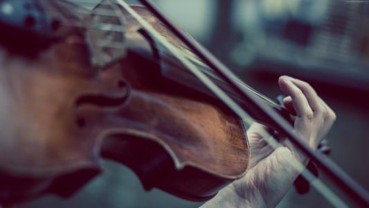 小提琴,音乐,手(水平)