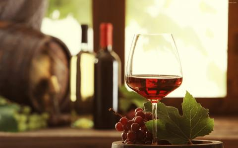 葡萄酒,饮料,酒精,葡萄,叶子(水平)