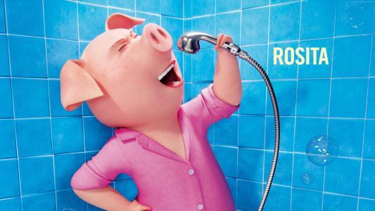 唱歌,猪,玫瑰,2016年最佳动画电影(水平)