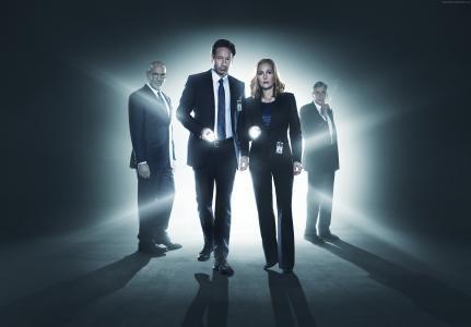 X档案,大卫Duchovny,最佳电视连续剧,侦探(水平)