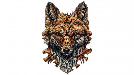 狐狸,图稿,纹身,4 k