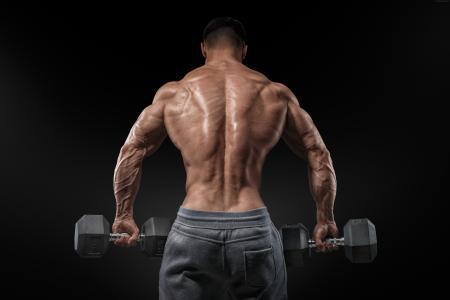 健美,锻炼,动机,培训,回,板凳站,杠铃(水平)
