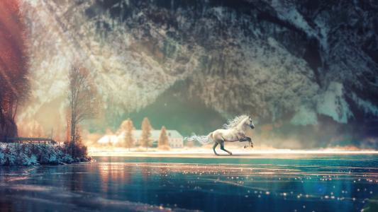 白马仙境梦幻唯美写真