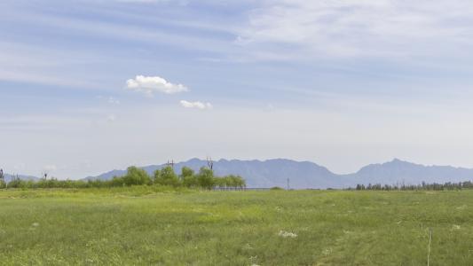 清新美丽的草原风光